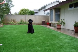 ▷🥇Chula Vista Artificial Grass Landscaping Installer in 91910