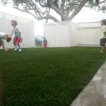 Synthetic Lawn Company San Diego, Top Rated Artificial Turf Installation Company