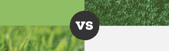 Artificial Turf vs. Natural Grass